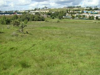 FOR SALE - Development/Land - 48-56 Boothby Street, Drayton, QLD 4350